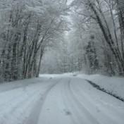 alimentation de l'hiver