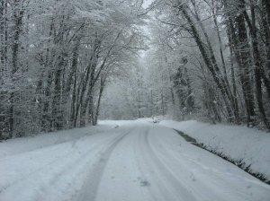 hiver laboratoires bimont