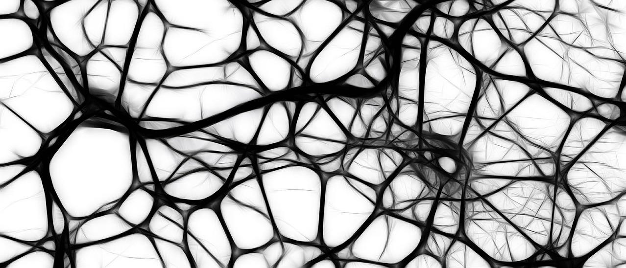 cerveau entraille curieuse médecine chinoise