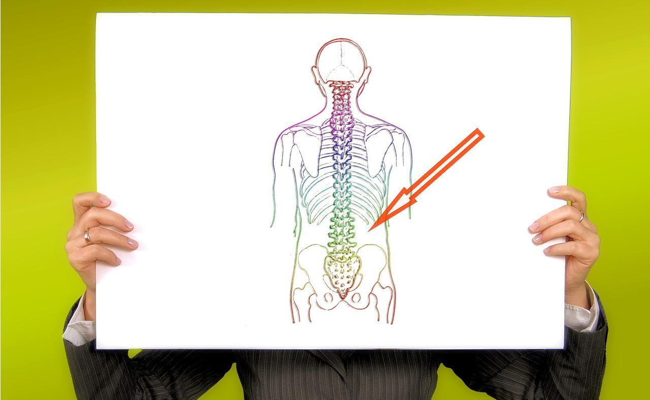 lombalgie sciatique mal de dos