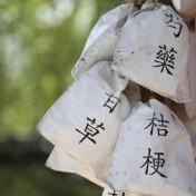 pharmacopée chinoise : 5 plantes phare