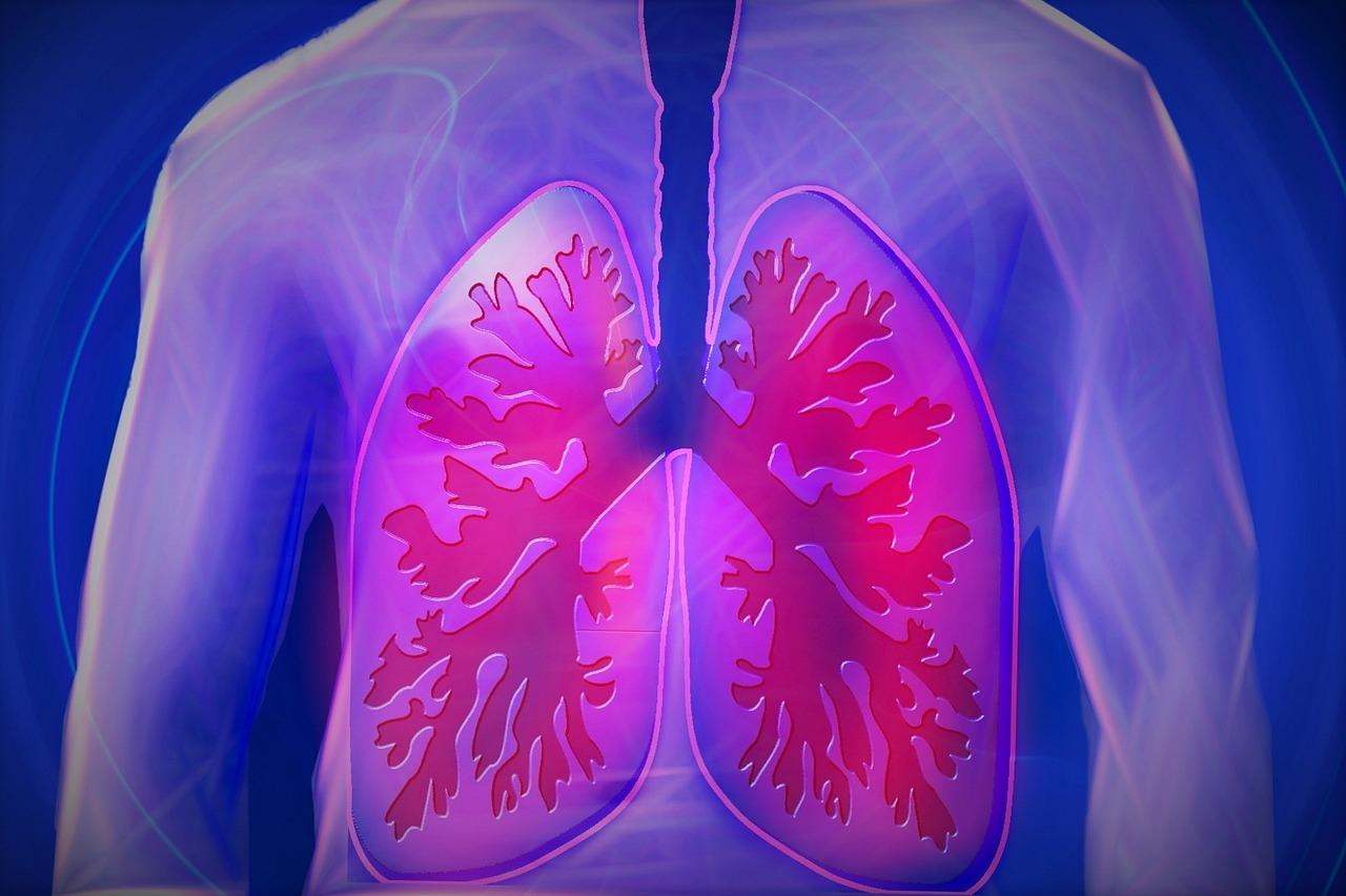 poumon troubles respiratoires automne